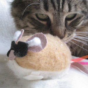 Blind Mouse TOY